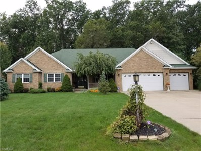 5058 Fitch Dr, Sheffield Village, OH 44054 - MLS#: 4040970