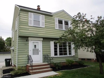 1185 Avondale Rd, South Euclid, OH 44121 - MLS#: 4040976