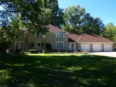 5100 Oak Point Rd, Lorain, OH 44053 - #: 4041032