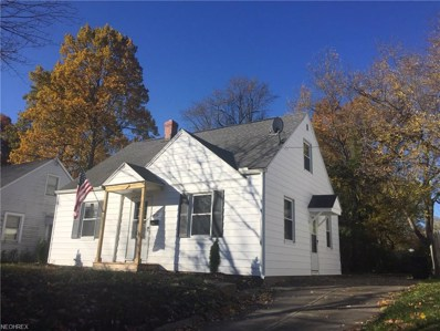 828 Caddo Ave, Akron, OH 44305 - MLS#: 4041090