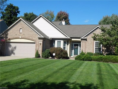 9195 Davis Way, Twinsburg, OH 44087 - MLS#: 4041285
