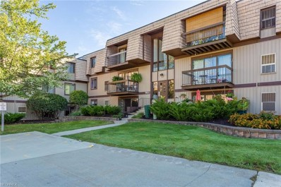 9801 Sunrise Blvd UNIT 25, North Royalton, OH 44133 - MLS#: 4041301