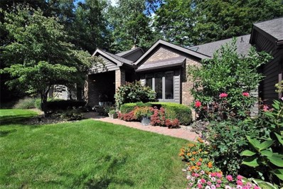 216 Heather Hl, Chagrin Falls, OH 44023 - MLS#: 4041333