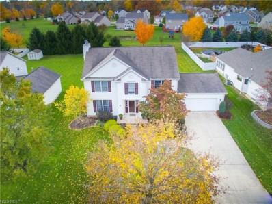 6110 Emerald Lakes Dr, Medina, OH 44256 - MLS#: 4041646