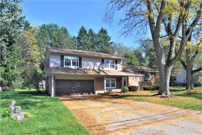 2995 Stanley Road, Fairlawn, OH 44333 - #: 4041984