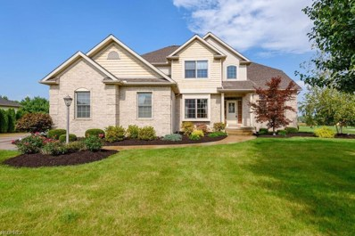 9163 Hunters Chase St NORTHWEST, Massillon, OH 44646 - MLS#: 4042112