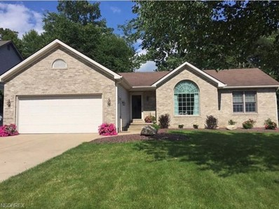 8561 Indian Creek Dr, Poland, OH 44514 - MLS#: 4042197