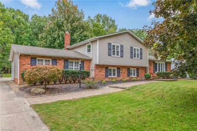 10104 Candlestick Ln, Concord, OH 44077 - MLS#: 4042361