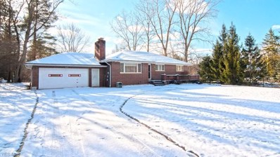 11103 Donmar Rd, North Royalton, OH 44133 - MLS#: 4042422