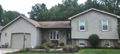 805 Sanderson Ave, Campbell, OH 44405 - MLS#: 4042567