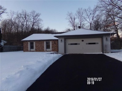 628 Wyndclift Cir, Youngstown, OH 44515 - MLS#: 4042686