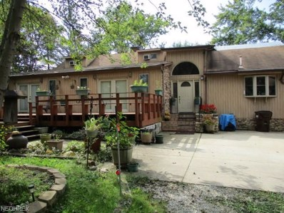 14480 Caves Road, Novelty, OH 44072 - #: 4042882