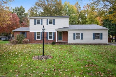 301 Shadydale Dr, Canfield, OH 44406 - MLS#: 4043104