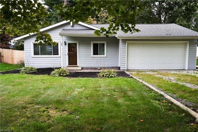 221 Shiawassee Ave, Fairlawn, OH 44333 - MLS#: 4043161