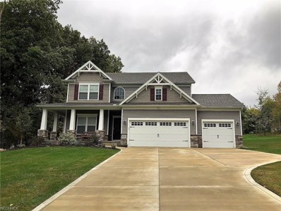 7685 Jo Ann Dr, Concord, OH 44077 - MLS#: 4043186