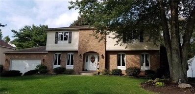 644 Farr Ave, Wadsworth, OH 44281 - MLS#: 4043263