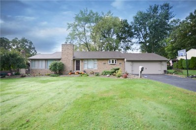 255 Deer Trail Ave, Canfield, OH 44406 - MLS#: 4043418