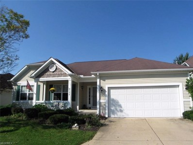 9134 E Windsor Dr, Olmsted Falls, OH 44138 - MLS#: 4043821