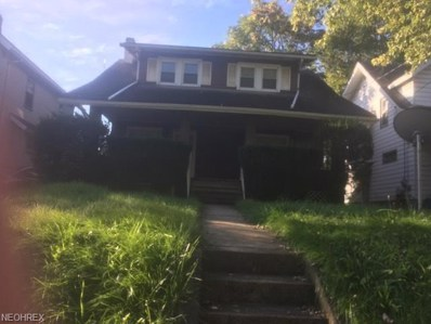 319 E Lucius Avenue, Youngstown, OH 44507 - #: 4043955