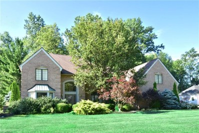 32379 Brandon Place, Avon Lake, OH 44012 - MLS#: 4044276
