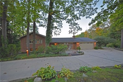 262 River Rd, Hinckley, OH 44233 - MLS#: 4044352