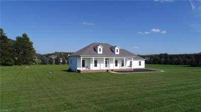 8017 Rice Road, Amherst, OH 44001 - #: 4044534