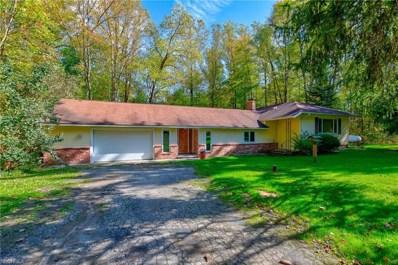 18389 Geauga Lake Rd, Chagrin Falls, OH 44023 - MLS#: 4044723