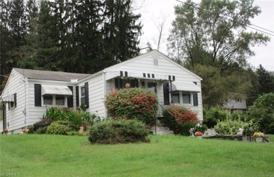 1325 Maple Ave, Bellaire, OH 43906 - MLS#: 4044734