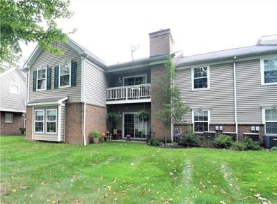 3324 Lenox Village Dr UNIT 222, Fairlawn, OH 44333 - MLS#: 4044889