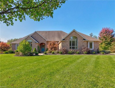 6550 Wooded View Dr, Boston Heights, OH 44236 - MLS#: 4044915