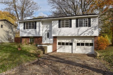 1319 Northfield Dr, Mineral Ridge, OH 44440 - MLS#: 4045243