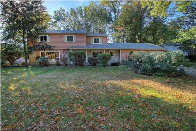 24720 Dundee Dr, Richmond Heights, OH 44143 - MLS#: 4045341