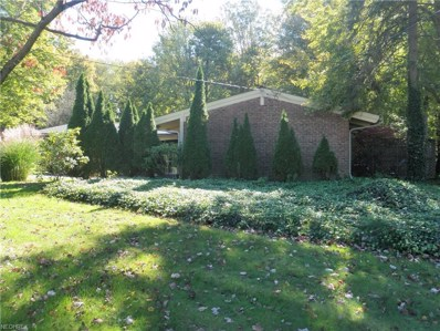 700 Bell Rd, Chagrin Falls, OH 44022 - MLS#: 4045607