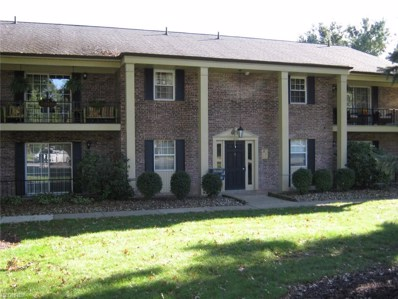 400 Quarry Ln NORTHEAST UNIT B, Warren, OH 44483 - MLS#: 4045608