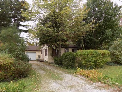 1904 Stanford St, Twinsburg, OH 44087 - MLS#: 4045819