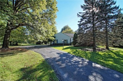 28900 Pike Dr, Chagrin Falls, OH 44022 - MLS#: 4046055