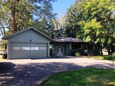 6190 Wadsworth Rd, Medina, OH 44256 - MLS#: 4046163