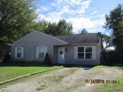 9924 Green Dr, Windham, OH 44288 - MLS#: 4046180