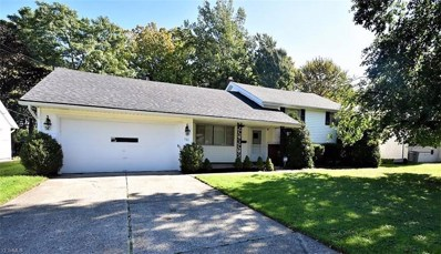 711 Edgewood Rd, Richmond Heights, OH 44143 - MLS#: 4046201