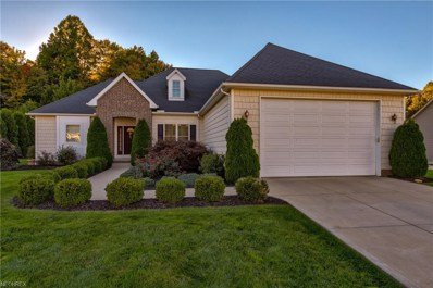8000 Forest Valley Ln, Concord, OH 44077 - MLS#: 4046426