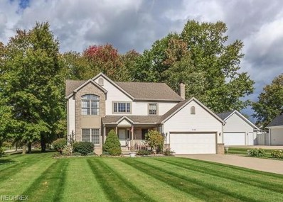 1149 Park Ledge Dr, Macedonia, OH 44056 - MLS#: 4046477