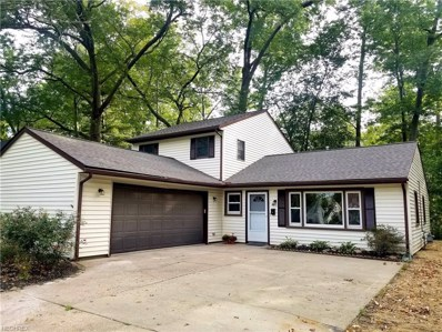 351 Bellaire Rd, Avon Lake, OH 44012 - MLS#: 4046825