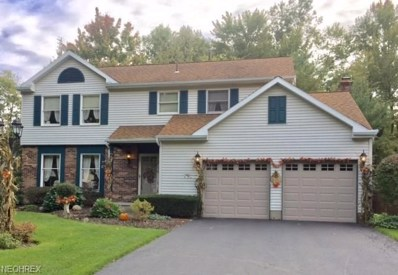 9191 Briarbrook, Warren, OH 44484 - MLS#: 4046888