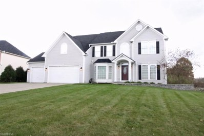 2815 Sweet Flag Way, Stow, OH 44224 - MLS#: 4047136