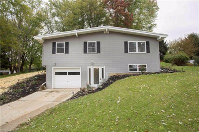 1197 Meadowview Rd, Kent, OH 44240 - MLS#: 4047267