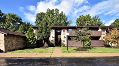 3253 Mayfield Rd UNIT 19, Cleveland Heights, OH 44118 - MLS#: 4047273