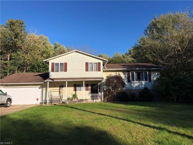 7529 Mountain Park Dr, Concord, OH 44060 - MLS#: 4047285