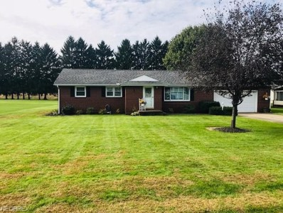 10225 Riceland Ave, Magnolia, OH 44643 - MLS#: 4047306
