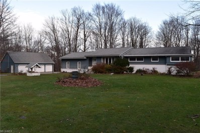 11919 Storybook Ln, Chesterland, OH 44026 - MLS#: 4047756