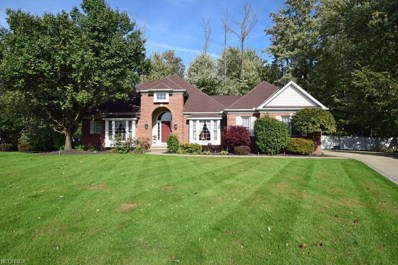 6915 Chairmans Ct, Concord, OH 44060 - MLS#: 4047831